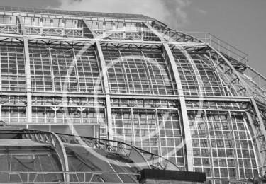 Bild #00012, Botanischer Garten in Berlin, Foto Preikschat